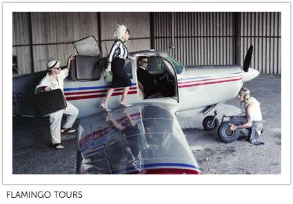 flamingo_tours